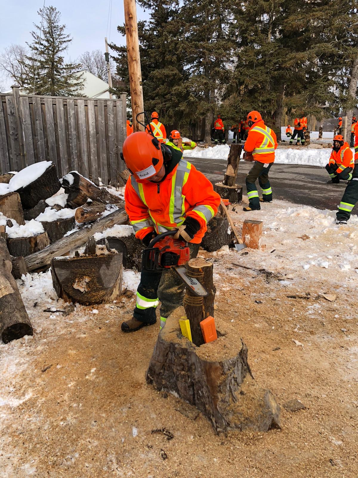worker with chainsaw in hard hat and safety coat cutting log