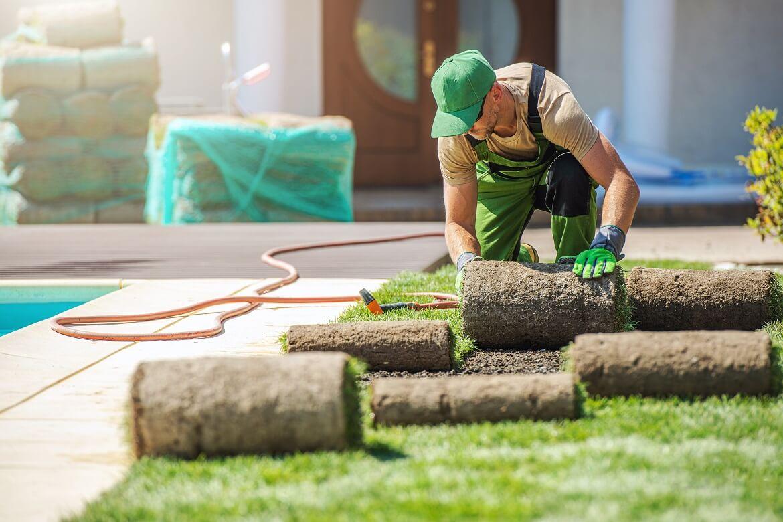 professional landscaper installing new grass turfs